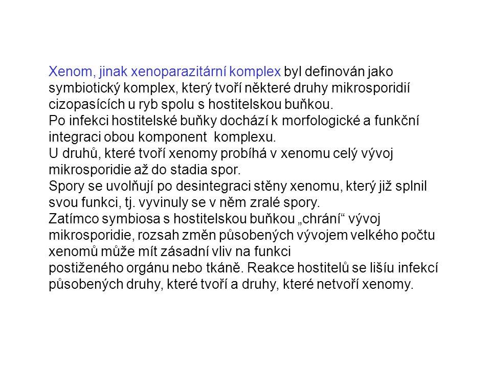 Xenom, jinak xenoparazitární komplex byl definován jako