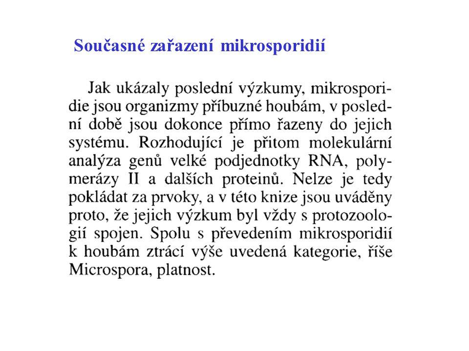 Současné zařazení mikrosporidií