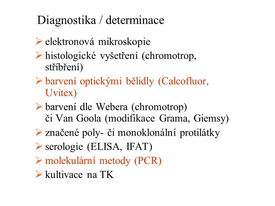 Diagnostika / determinace