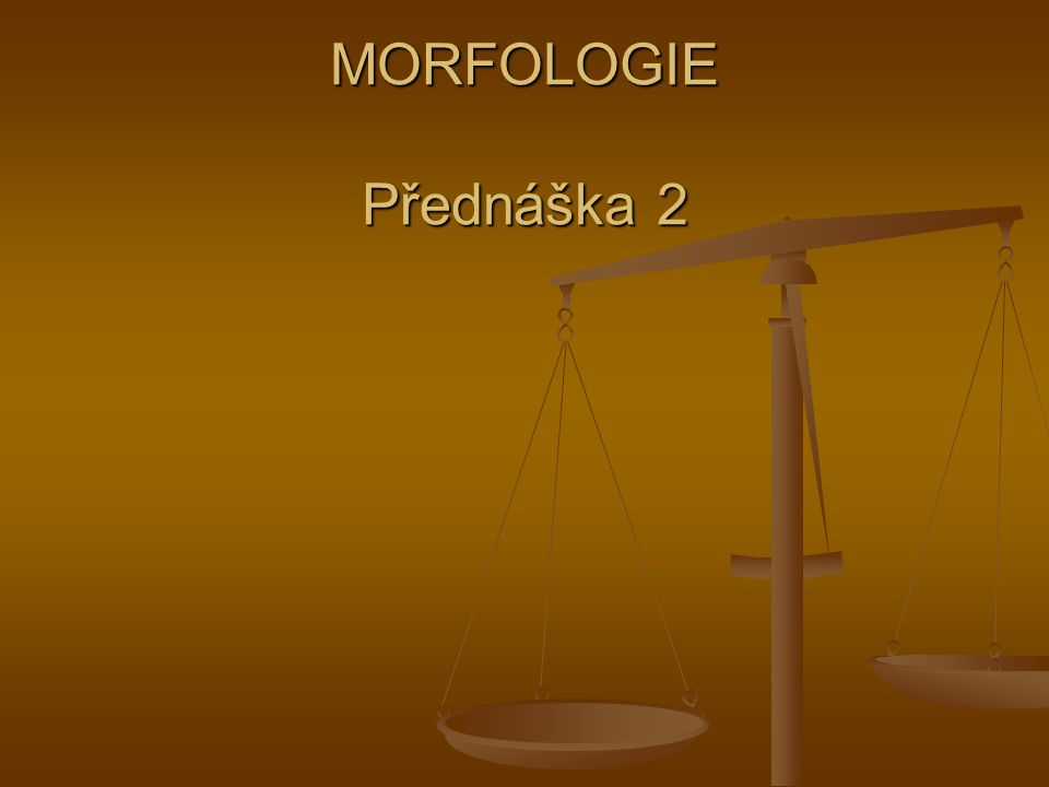 MORFOLOGIE Přednáška 2