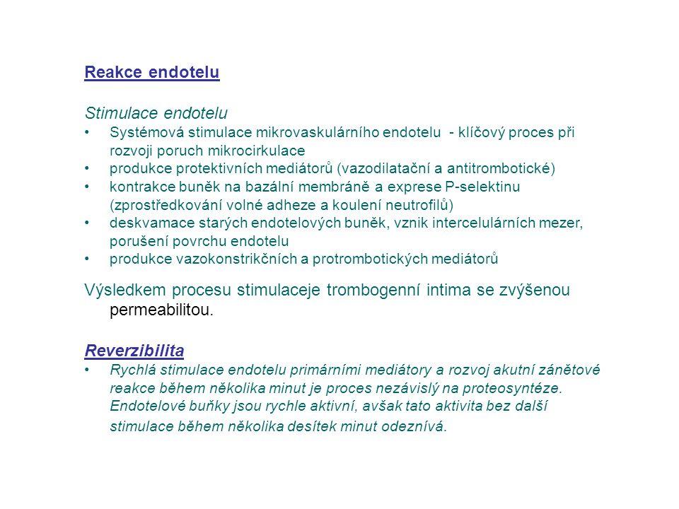 Reakce endotelu Stimulace endotelu