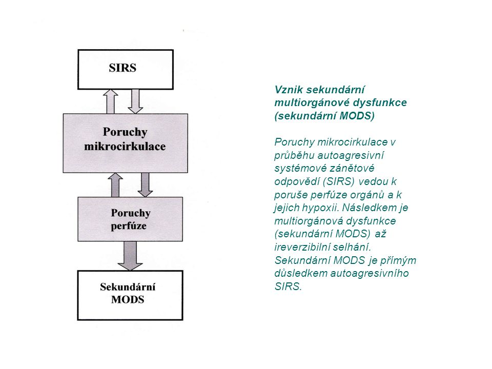 Vznik sekundární multiorgánové dysfunkce (sekundární MODS)