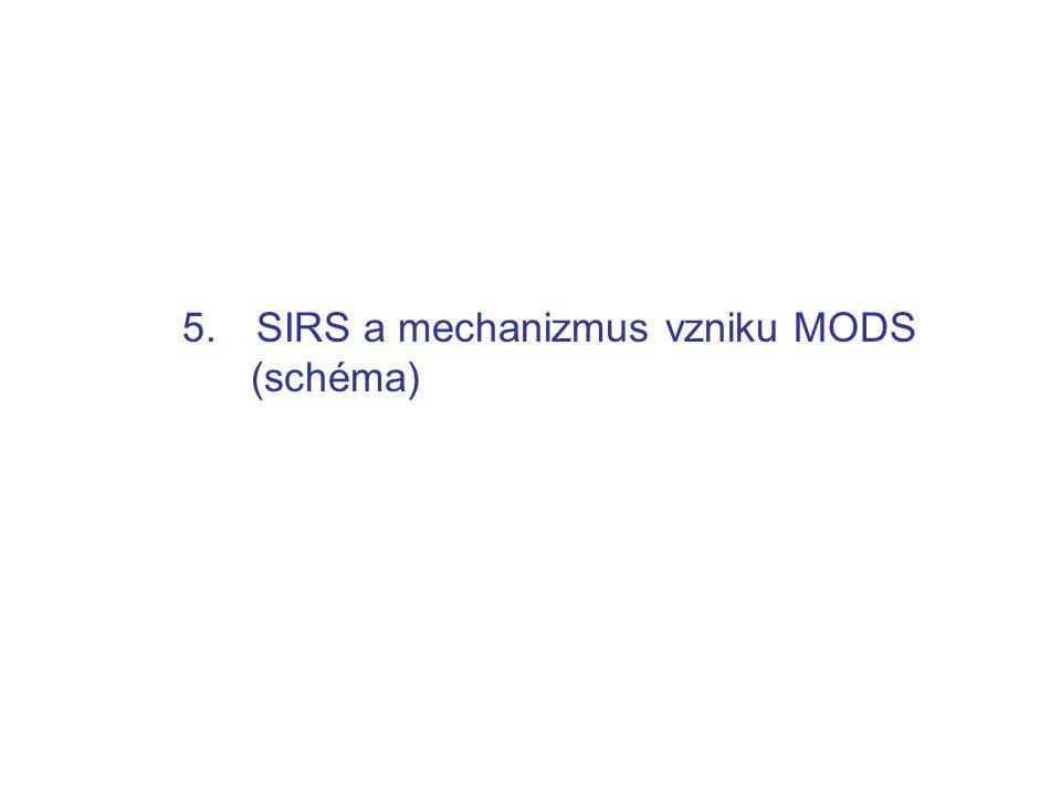 SIRS a mechanizmus vzniku MODS