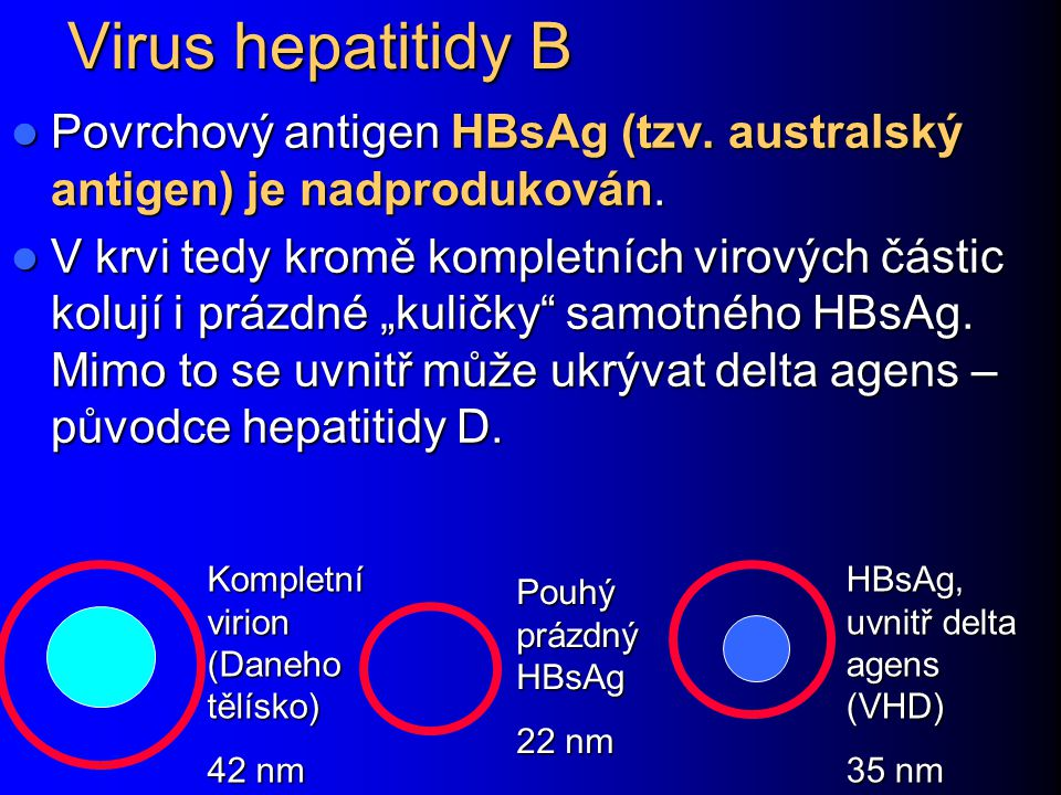 Virus hepatitidy B Povrchový antigen HBsAg (tzv. australský antigen) je nadprodukován.
