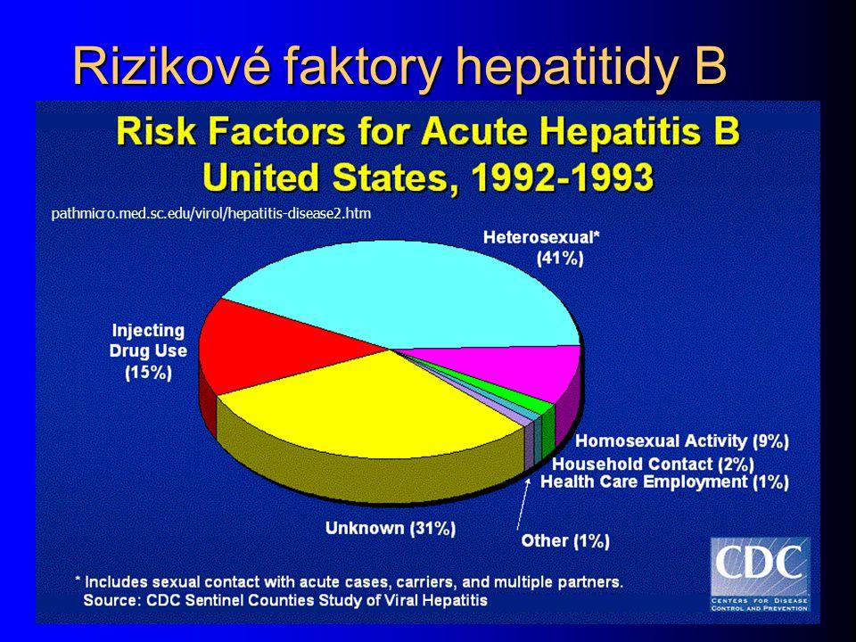 Rizikové faktory hepatitidy B