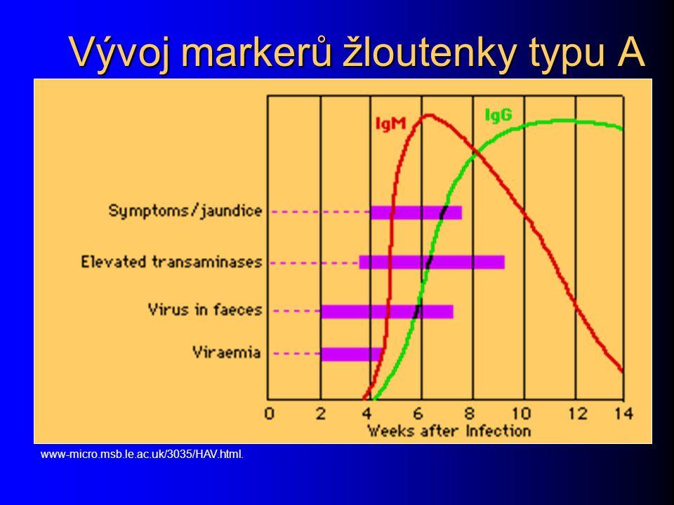 Vývoj markerů žloutenky typu A