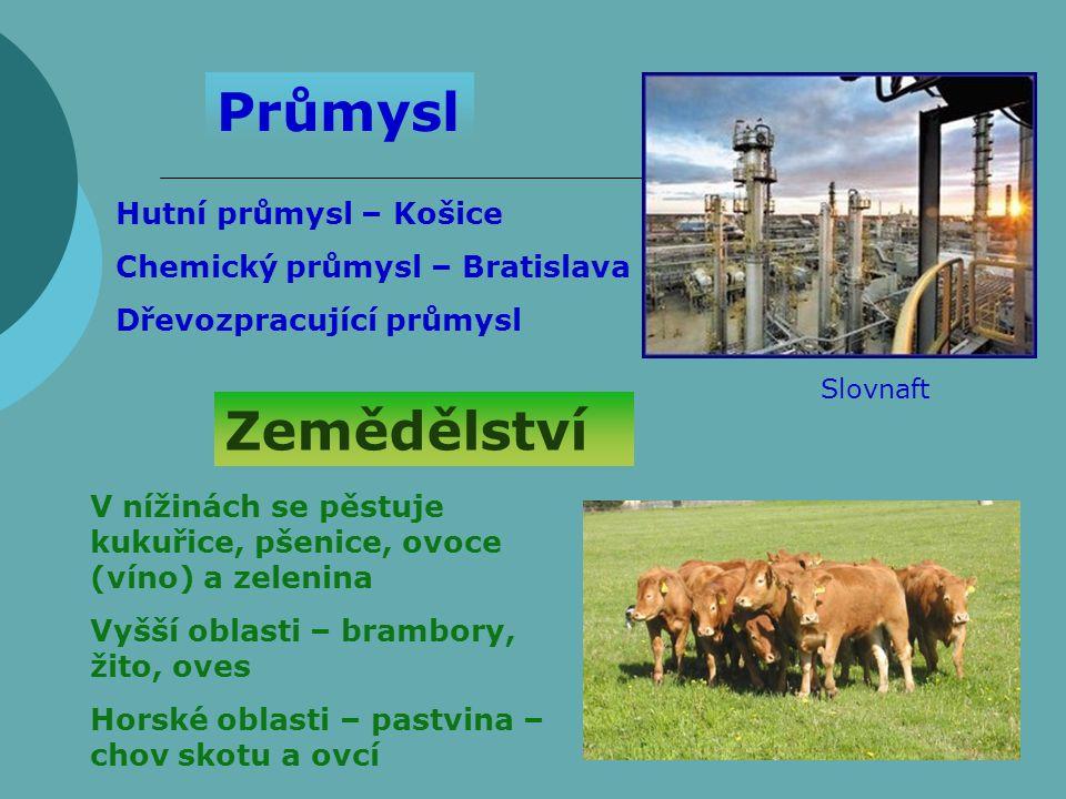 Průmysl Zemědělství Hutní průmysl – Košice