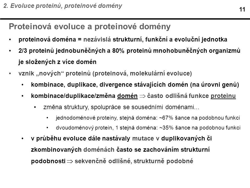 Proteinová evoluce a proteinové domény