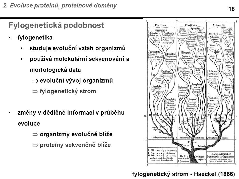 Fylogenetická podobnost