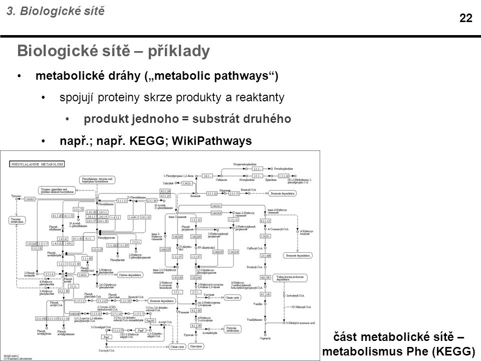 část metabolické sítě – metabolismus Phe (KEGG)