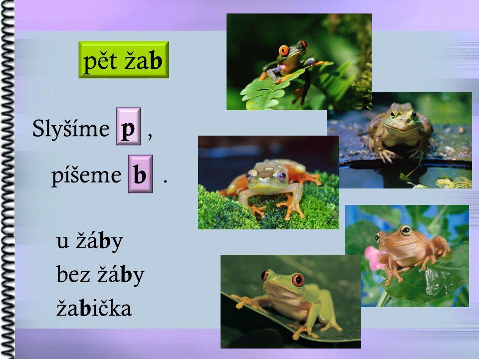 pět žab p Slyšíme , píšeme . b u žáby bez žáby žabička
