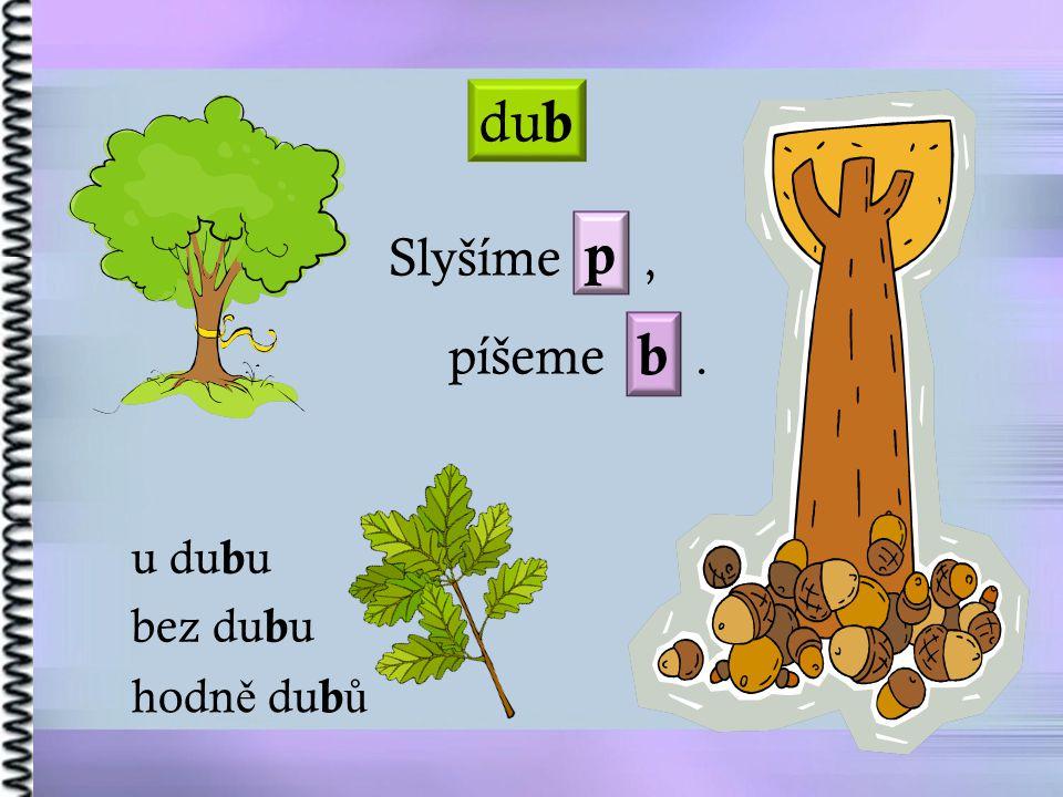 dub p Slyšíme , píšeme . b u dubu bez dubu hodně dubů
