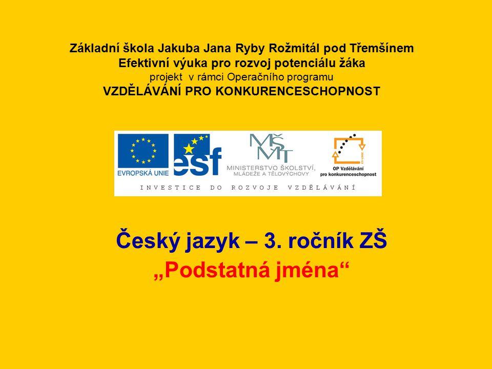 """Český jazyk – 3. ročník ZŠ """"Podstatná jména"""
