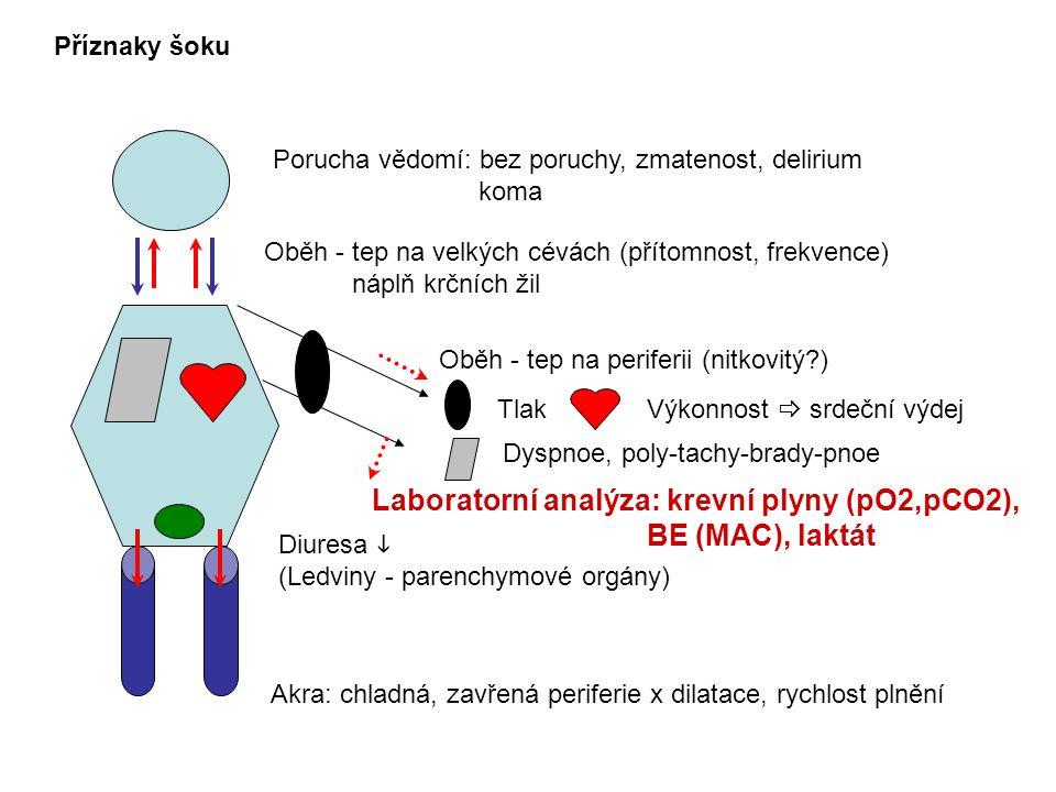 Laboratorní analýza: krevní plyny (pO2,pCO2), BE (MAC), laktát