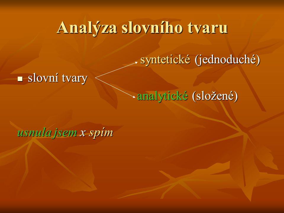Analýza slovního tvaru
