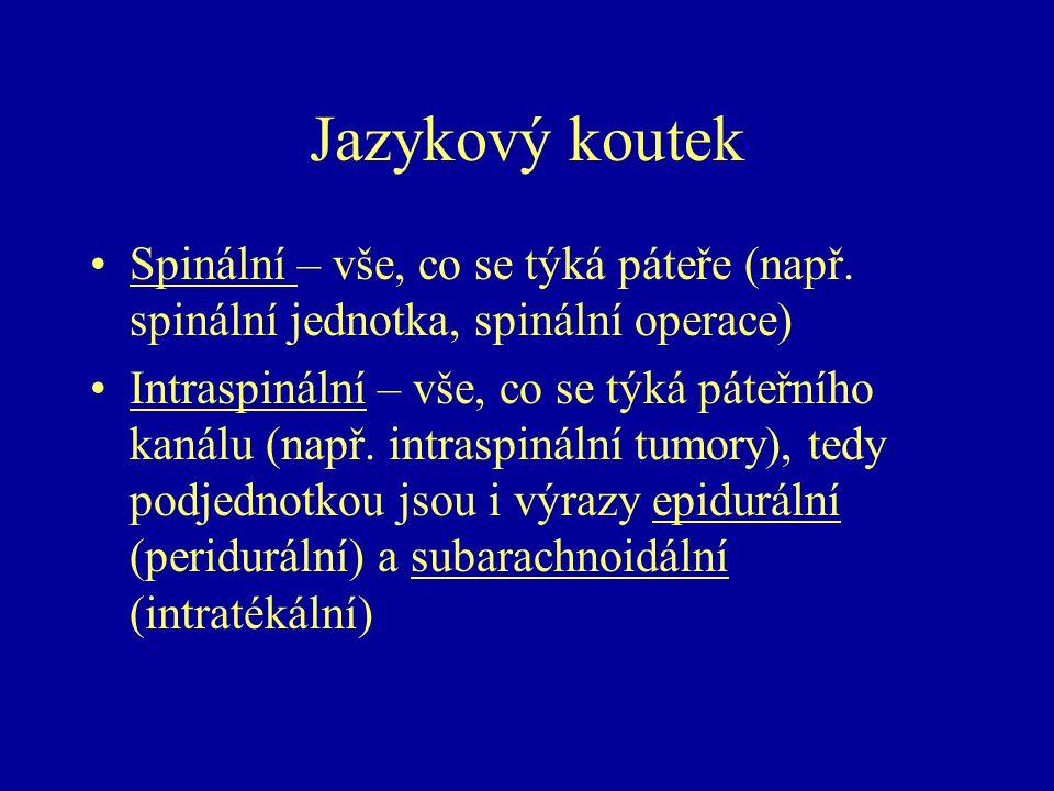 Jazykový koutek Spinální – vše, co se týká páteře (např. spinální jednotka, spinální operace)