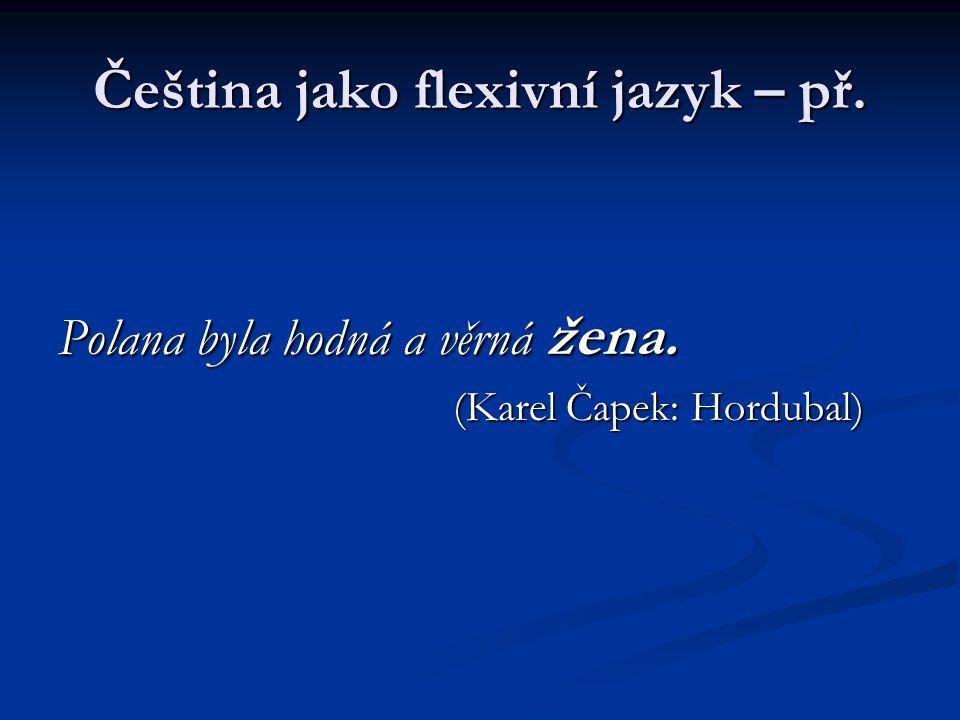 Čeština jako flexivní jazyk – př.