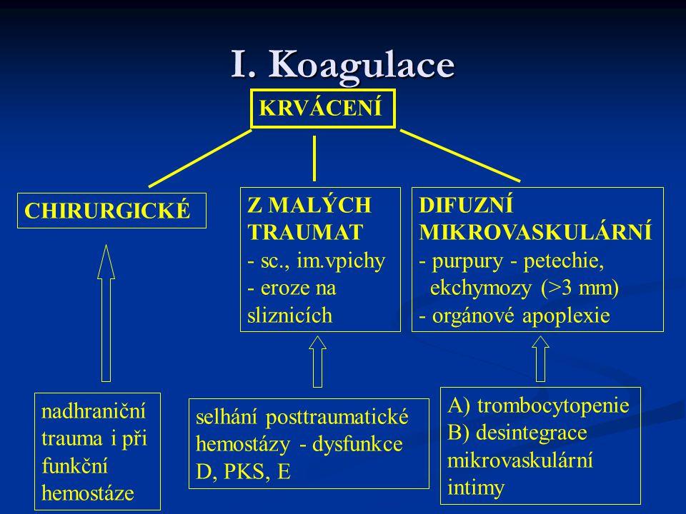 I. Koagulace KRVÁCENÍ Z MALÝCH TRAUMAT - sc., im.vpichy