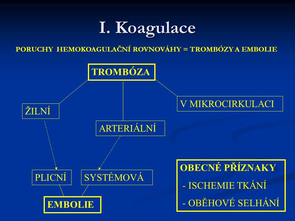I. Koagulace TROMBÓZA V MIKROCIRKULACI ŽILNÍ ARTERIÁLNÍ