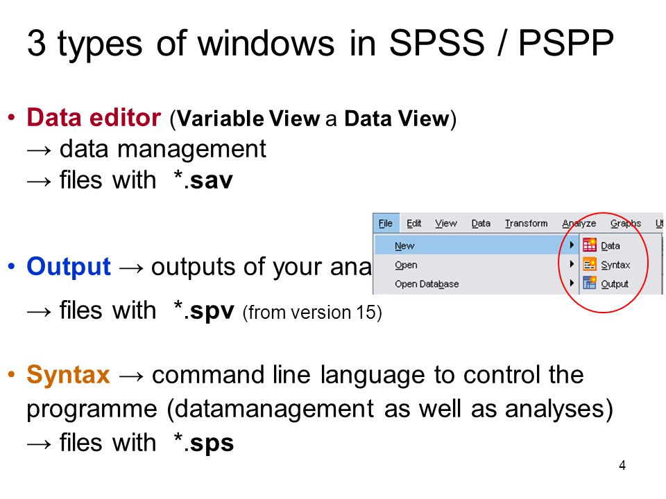 3 types of windows in SPSS / PSPP