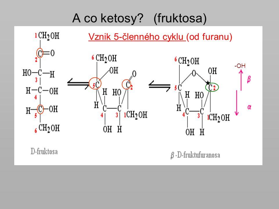 A co ketosy (fruktosa) Vznik 5-členného cyklu (od furanu) -OH