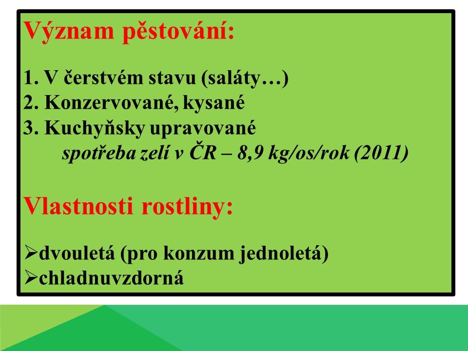 spotřeba zelí v ČR – 8,9 kg/os/rok (2011)