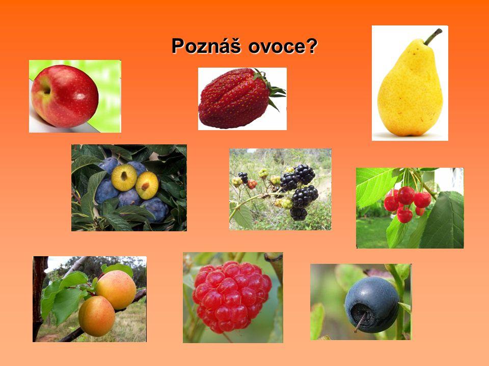 Poznáš ovoce