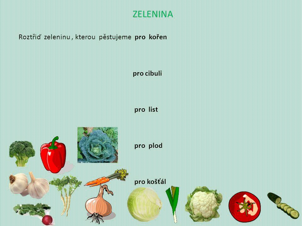 ZELENINA Roztřiď zeleninu , kterou pěstujeme pro kořen pro cibuli