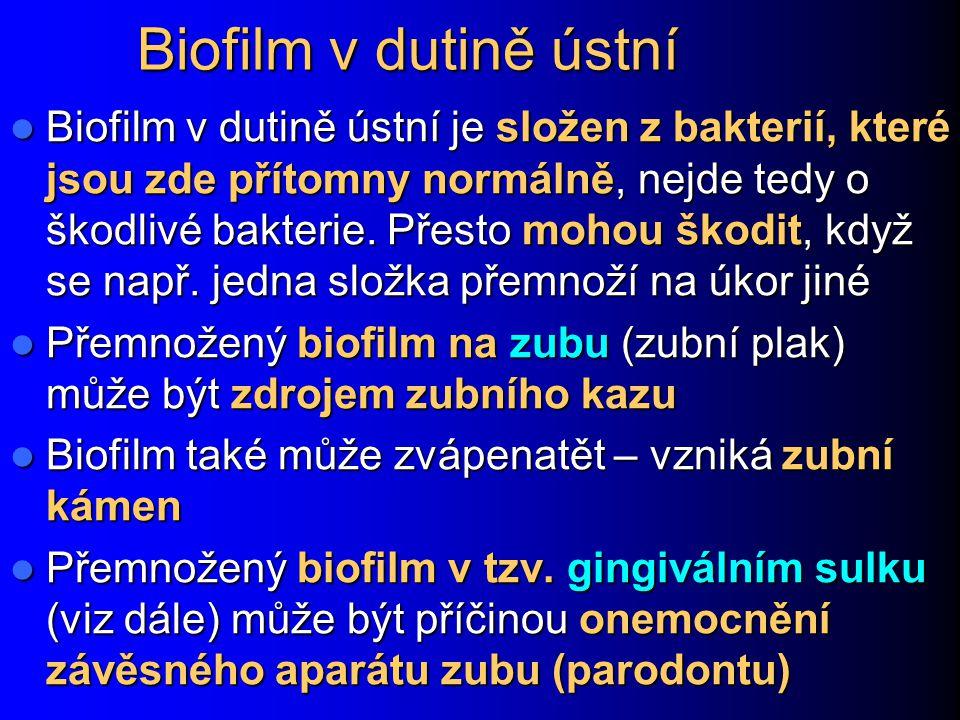 Biofilm v dutině ústní
