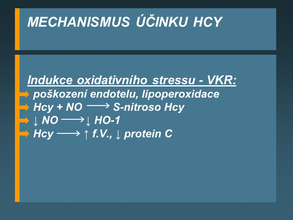 MECHANISMUS ÚČINKU HCY