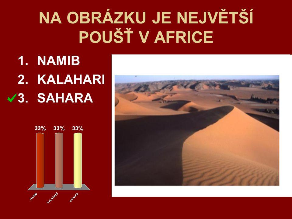 NA OBRÁZKU JE NEJVĚTŠÍ POUŠŤ V AFRICE
