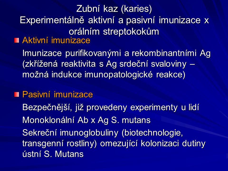 Zubní kaz (karies) Experimentálně aktivní a pasivní imunizace x orálním streptokokům