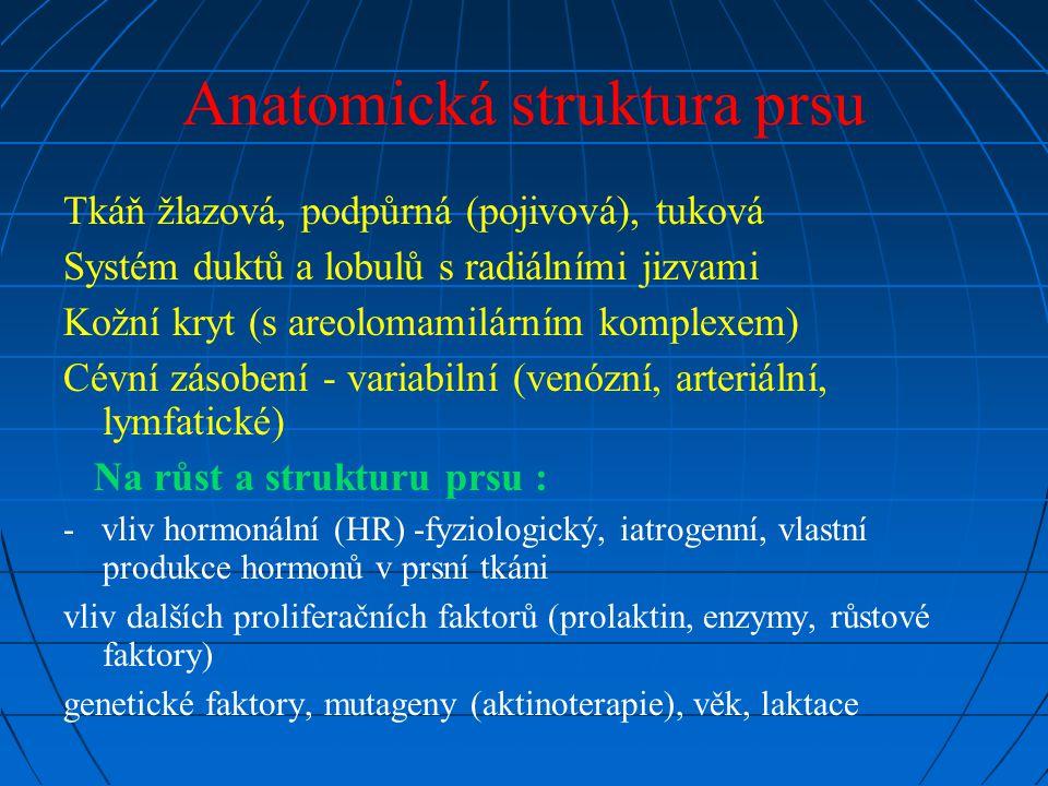 Anatomická struktura prsu