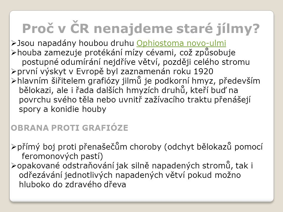 Proč v ČR nenajdeme staré jílmy