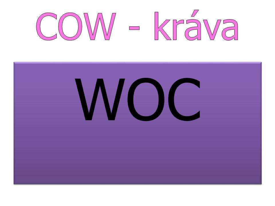 COW - kráva WOC