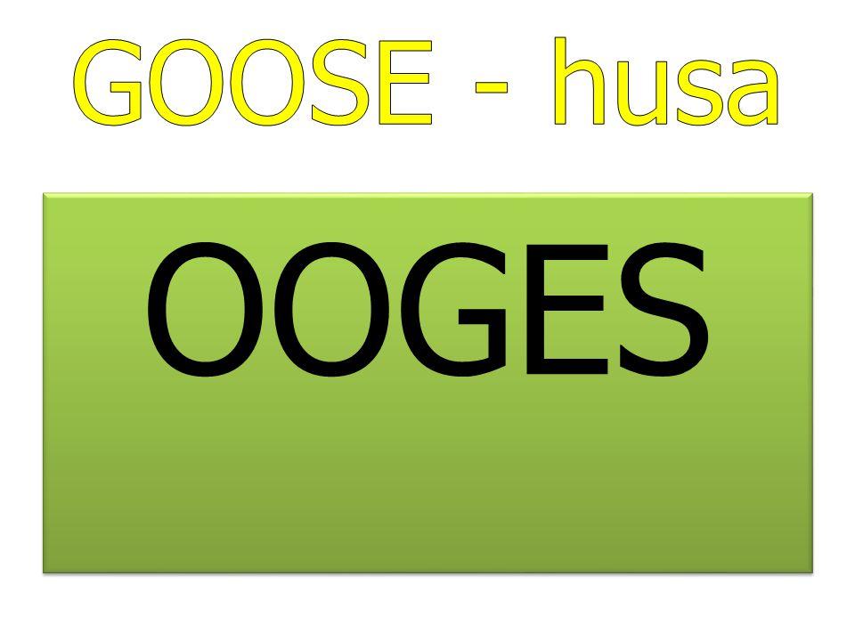 GOOSE - husa OOGES
