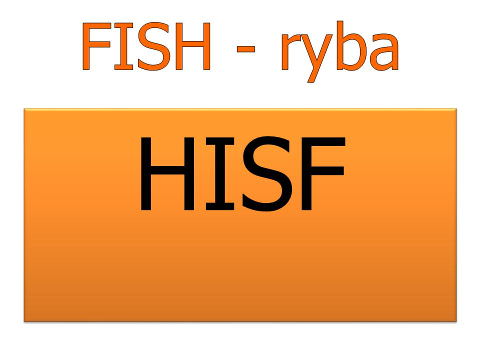 FISH - ryba HISF