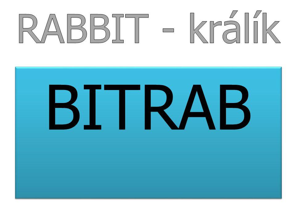 RABBIT - králík BITRAB