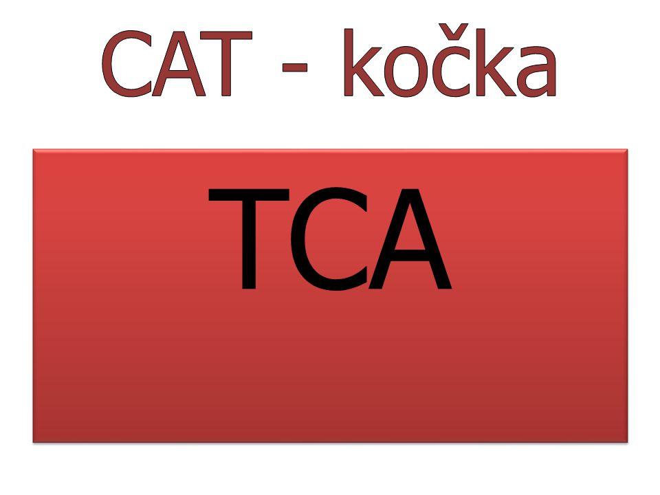 CAT - kočka TCA