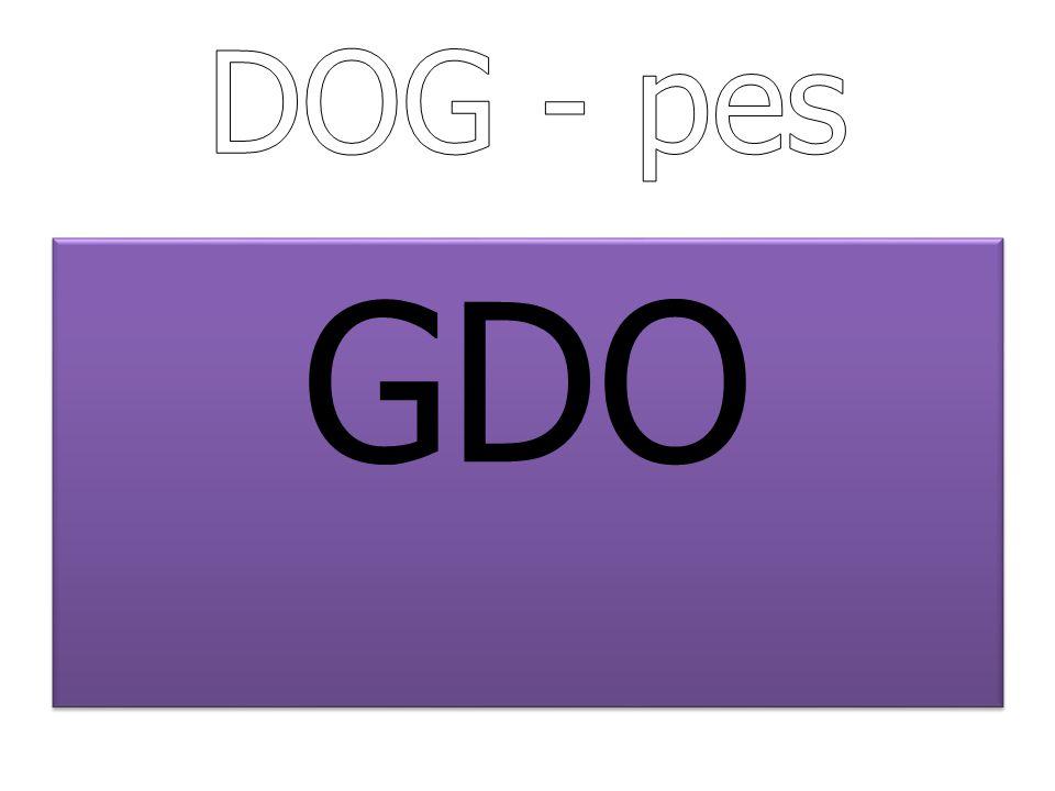 DOG - pes GDO
