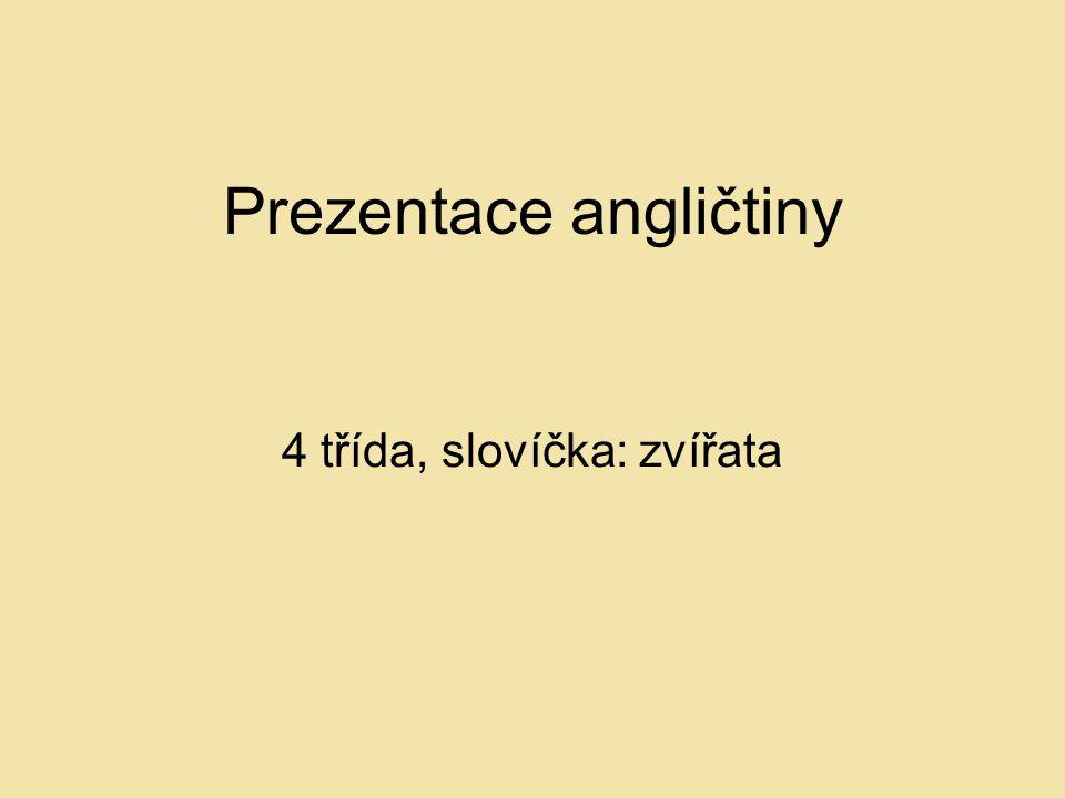 Prezentace angličtiny