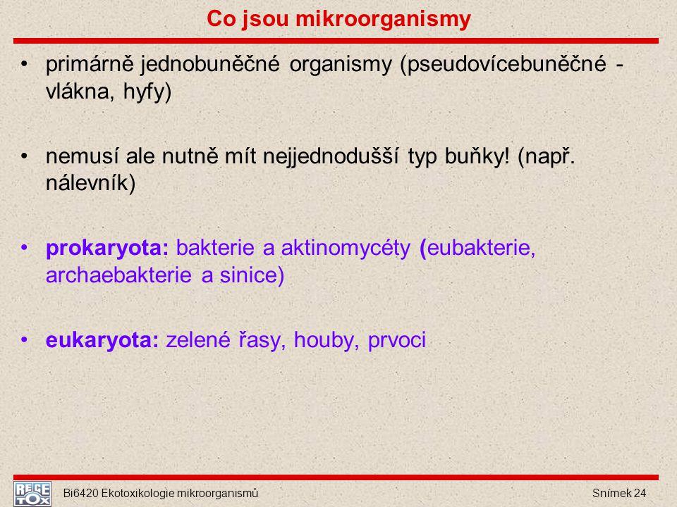 Co jsou mikroorganismy