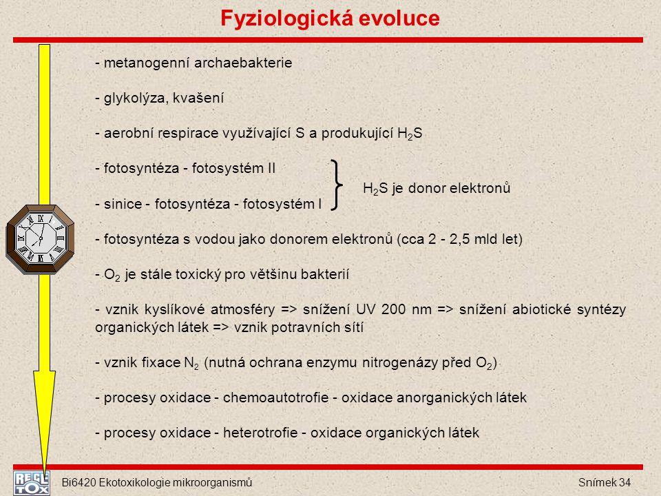 Fyziologická evoluce - metanogenní archaebakterie - glykolýza, kvašení