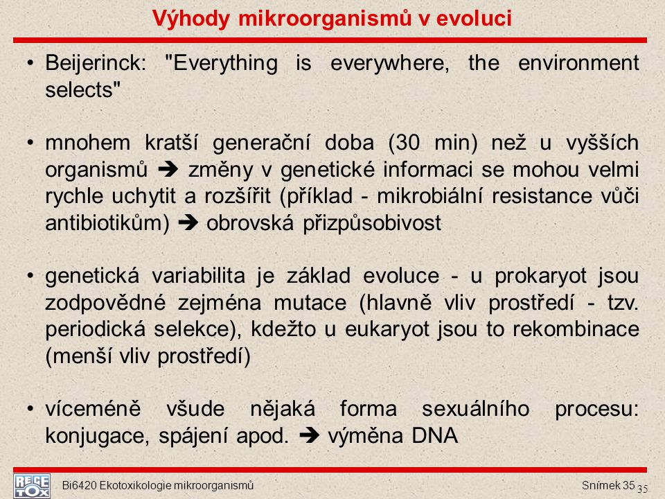Výhody mikroorganismů v evoluci