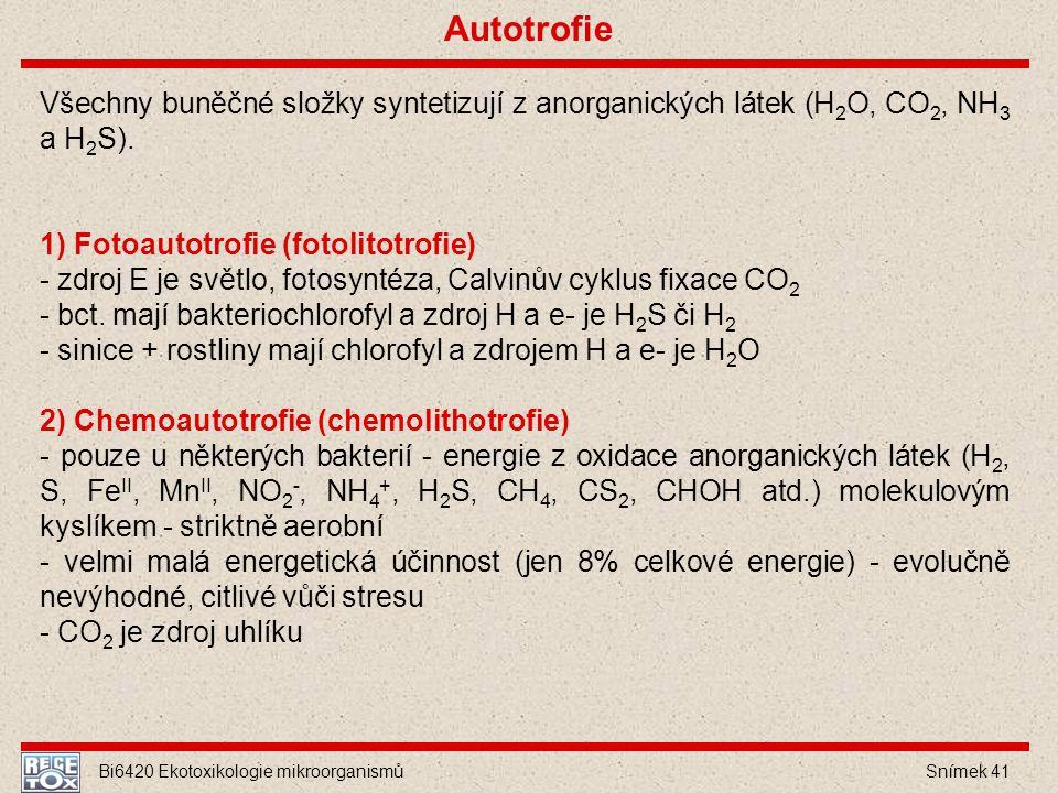 Autotrofie Všechny buněčné složky syntetizují z anorganických látek (H2O, CO2, NH3 a H2S). 1) Fotoautotrofie (fotolitotrofie)