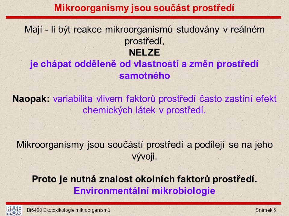 Mikroorganismy jsou součást prostředí
