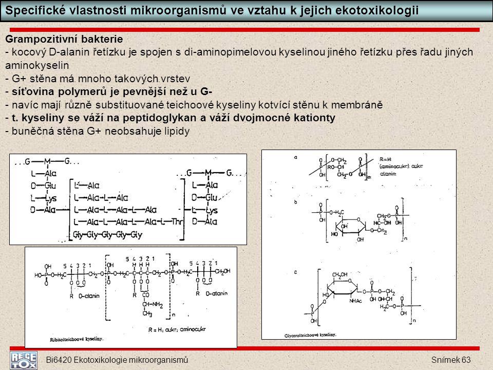 Specifické vlastnosti mikroorganismů ve vztahu k jejich ekotoxikologii