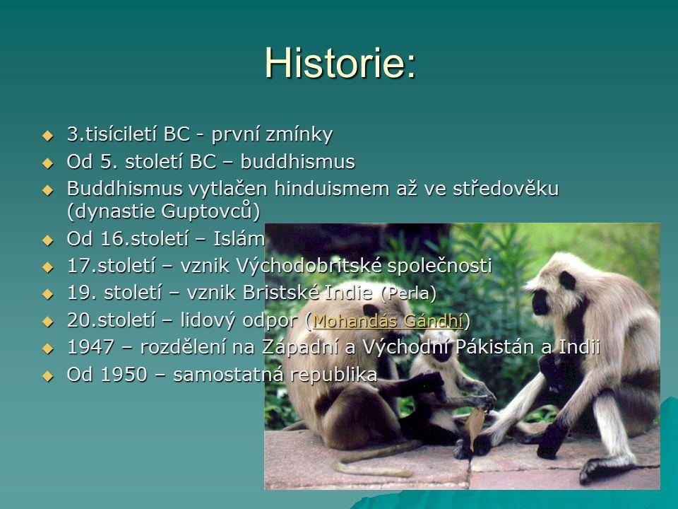 Historie: 3.tisíciletí BC - první zmínky Od 5. století BC – buddhismus