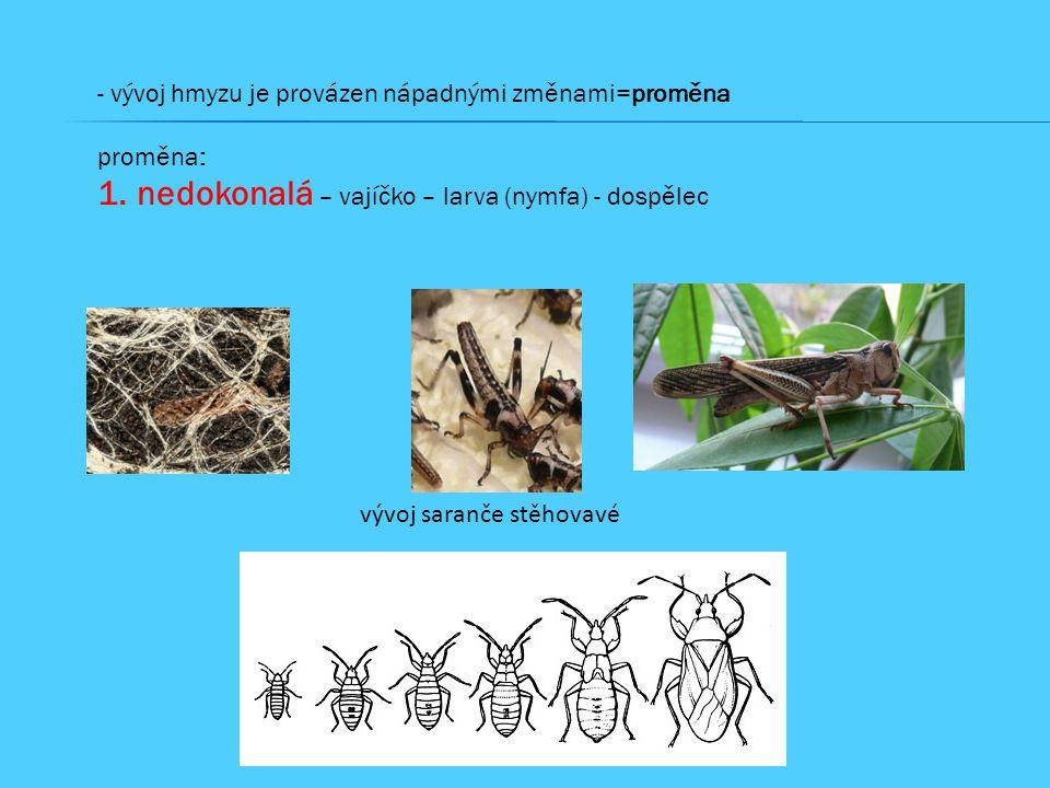 nedokonalá – vajíčko – larva (nymfa) - dospělec