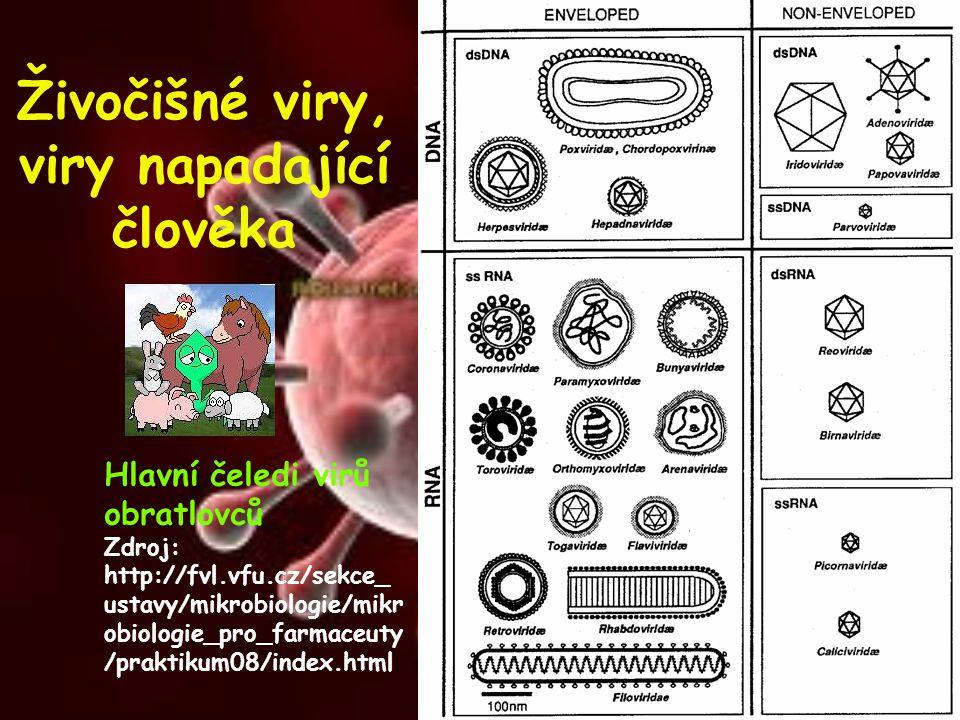 Živočišné viry, viry napadající člověka